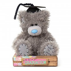 Me to You 16 cm bear passed